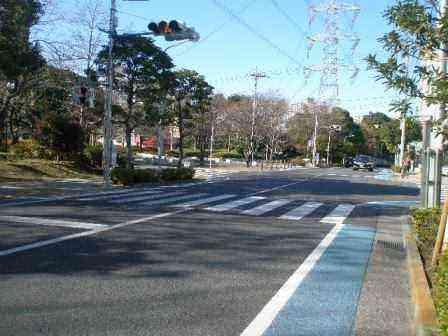 新田公園前に信号を取り付け自転車用のブルーレーンを設置しました。