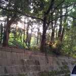 20120507_165041