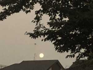ブルームーンの月がキレイでした。