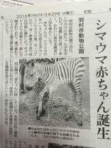3月30日読売新聞記事より