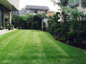 M邸のお庭の芝は、3、4日に一度カットして手入れをされています。