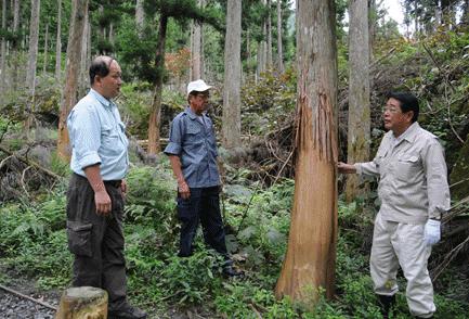 石田衆議院議員とともに鹿の食害現場を視察