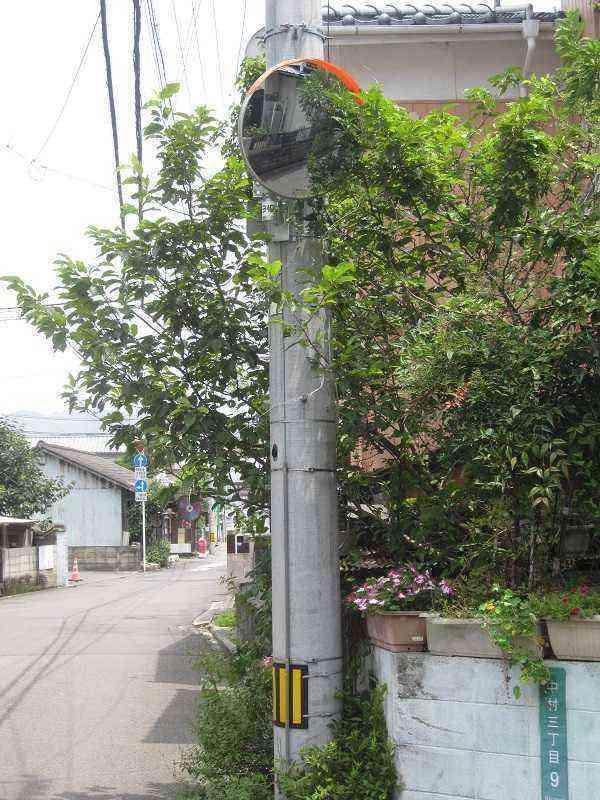 【素鵞40号線】【素鵞24号線】T字路(中村2丁目3)にカーブミラーを設置!!