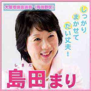 15.3.30島田候補