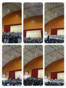 collage-1541819657708.jpg