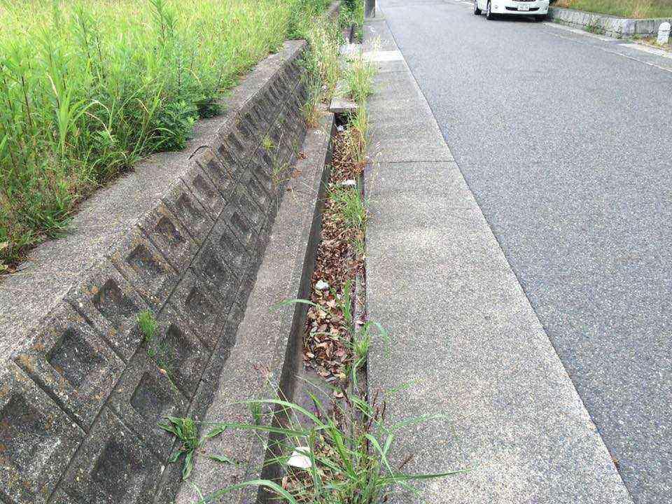 万場川東公園の横の側溝