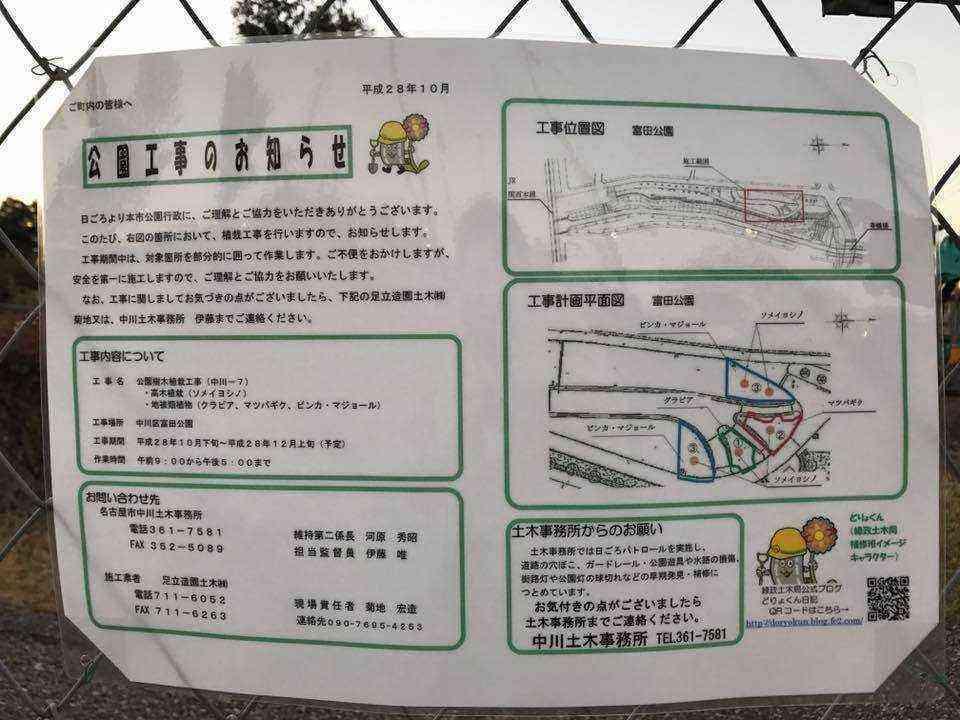 富田公園のソメイヨシノ3
