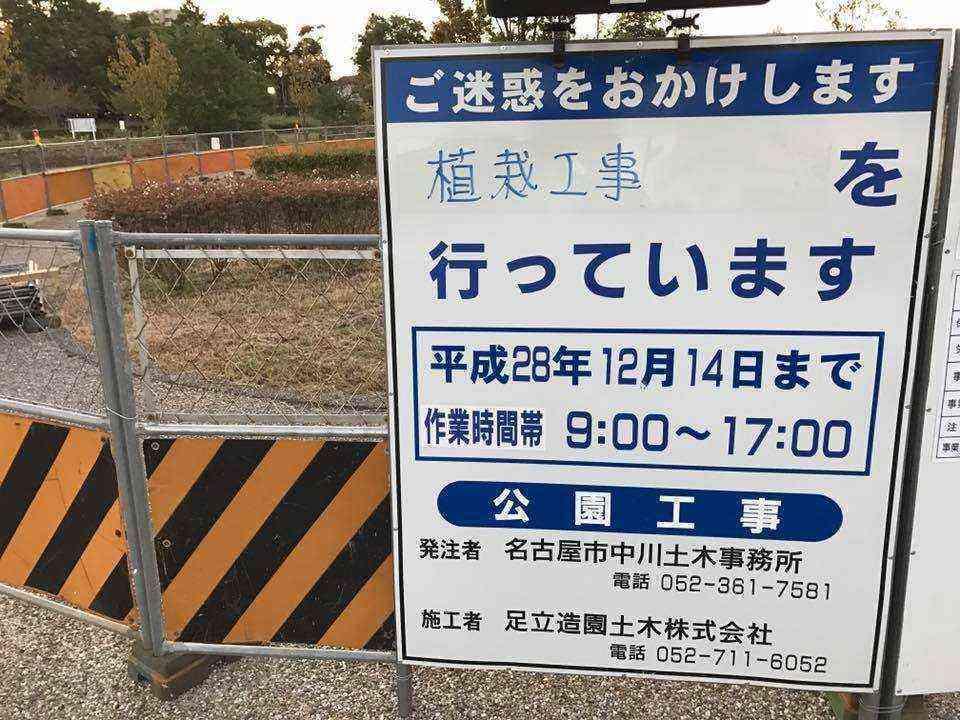 富田公園のソメイヨシノ4