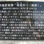 2010.11.1 031