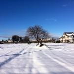 160118積雪4