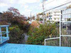 2012-11-24_121949.jpg