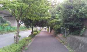 2014-07-20_162834.jpg