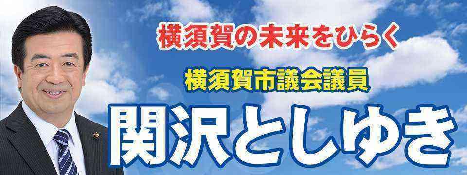 [神奈川][横須賀市]関沢としゆき