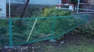 鉄製のフェンスで安心