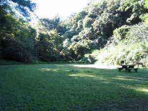 池子の森自然公園