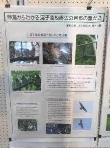 環境フェスティバル3