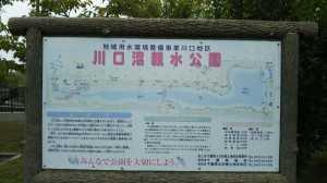 川口沼親水公園④