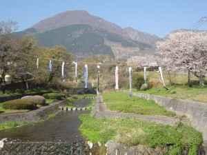 20200404扇山鯉のぼり上げ境川 (2)