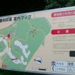 NEC_0256