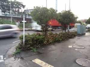 江田246入口タウン山本対策前 (4)