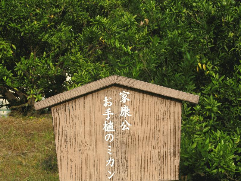 2015静岡③