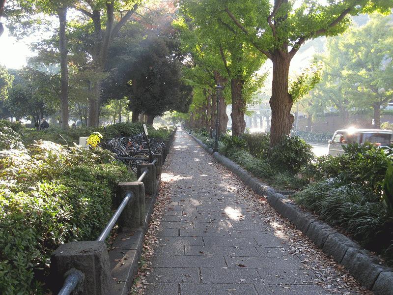 2015産経.横浜