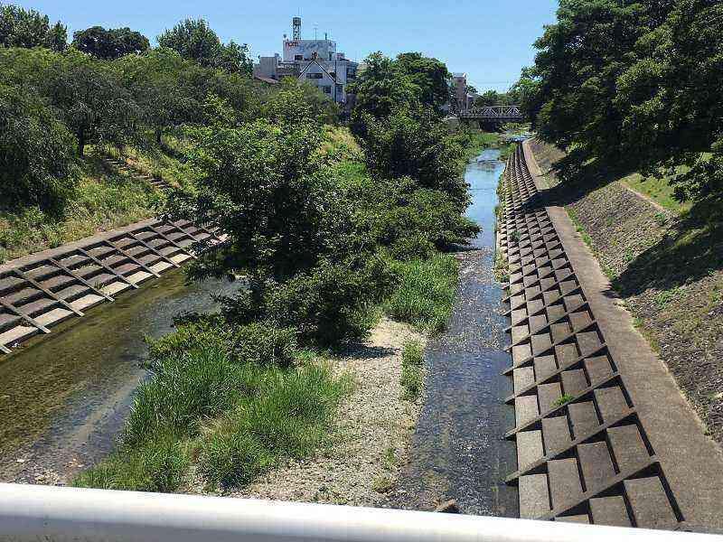 素鵞地域北側の石手川川底を整備before