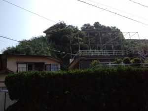 CA3I0900.jpg