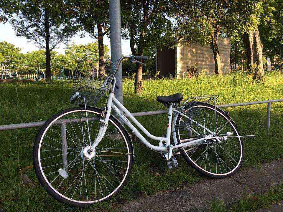 富田公園の放置自転車1