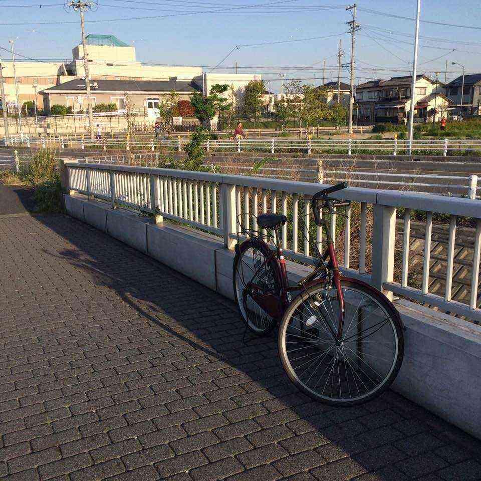 富田公園の放置自転車3