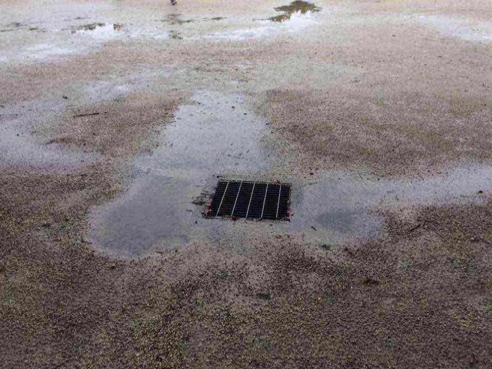 富田公園の水たまり2