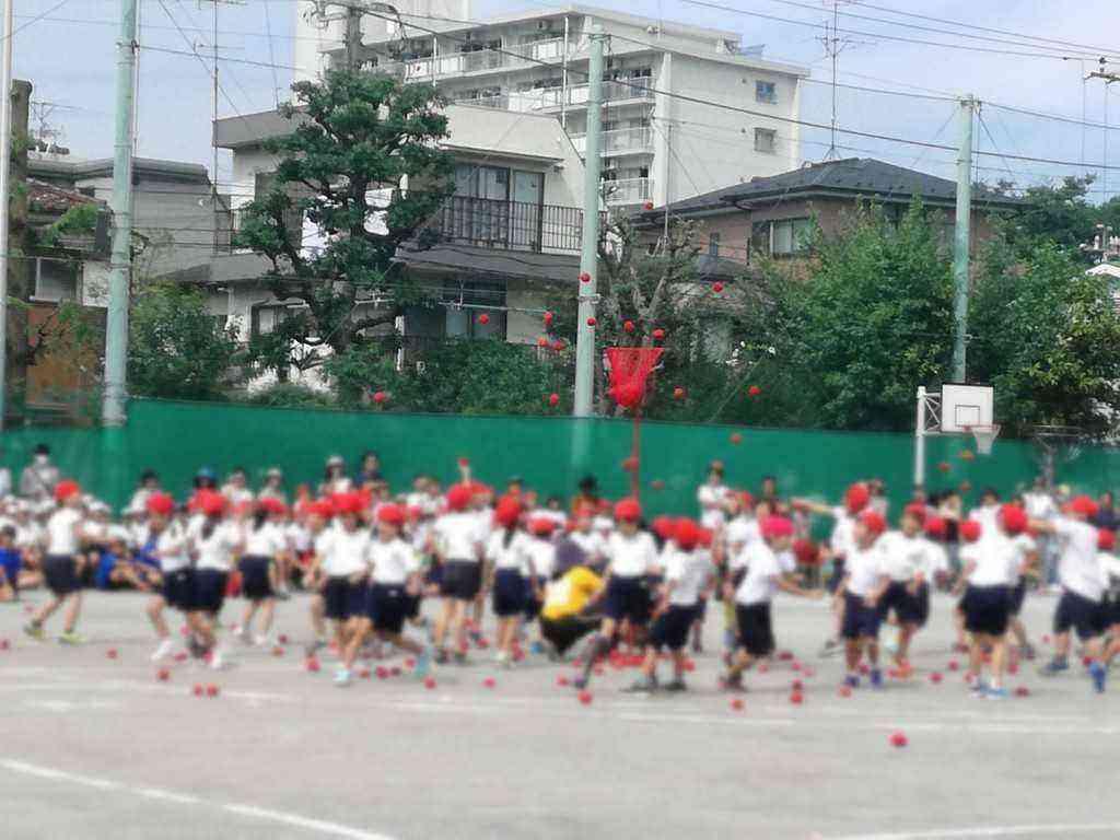 中 萩中 小学校