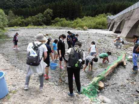 生保内川のせせらぎの中で岩魚のつかみ取り