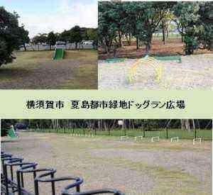横須賀市夏島都市緑地ドッグラン