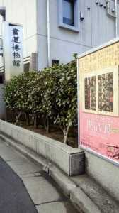 書道博物館
