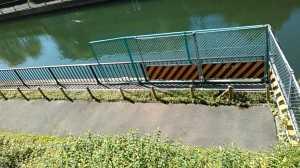 北十間川遊歩道 (1)