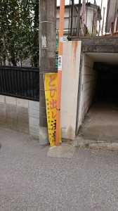 DSC_0466