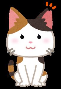 cat_sakura_cut_female