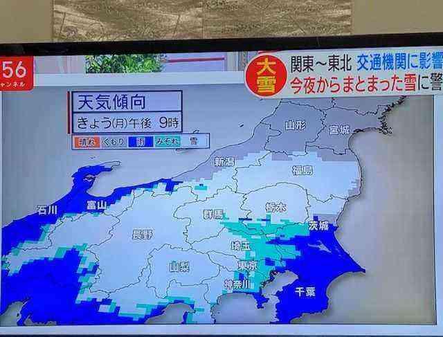 吉川 市議会 議員 選挙