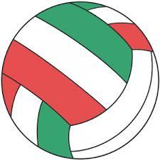 バレーボール1
