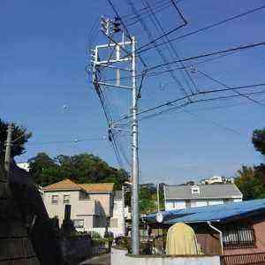ピカピカな高い電柱