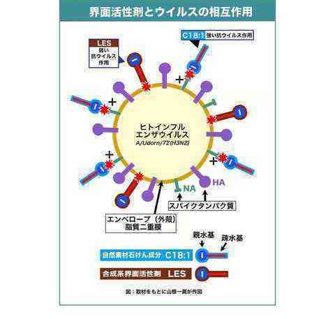 人インフルエンザウイルス