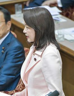 質問する竹谷さん=23日 参院決算委