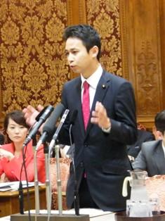 予算委員会で質問を行った谷合参院議員