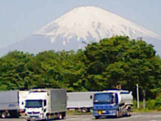 20090526.jpg
