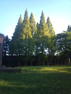 20100922.jpg