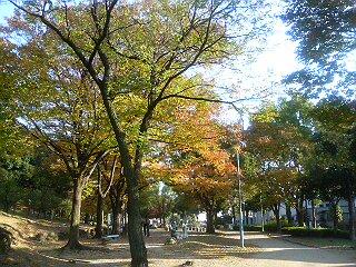ito-wataru_1125.jpg